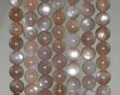 8mm Grey Moonstone Gemstone Grade AAA Round 8mm Loose Beads 7 inch Half Strand (90186359-809)