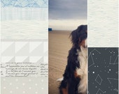 Custom listing for Merritt McKay for a crib size quilt, the dog in the beach