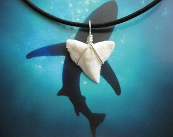 Shark Tooth Necklace, Modern Day Bull Shark tooth, Silver plated wire, Leather cord
