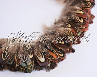 Wholesale / bulk feathers - natural brown real Ringneck Pheasant Almonds small feathers for millinery, crafts strung 1 ft (30.5cm) / FB145-1