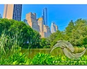 Central Park, pond, grass, city, surreal, wizard of oz, blue, green, summer, sky is the limit, nyc, manhattan, perspective, composition, wow