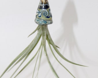 Lampwork Glass Hanging Air Plant Holder . Ait Plant Container . by Lori Davidson