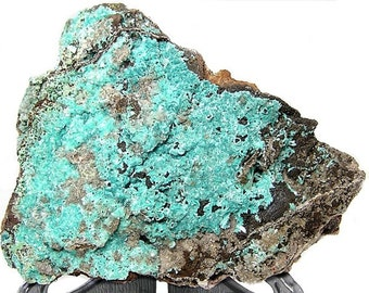 Aurichalcite Aqua Blue Needle Crystals with malachite,  crystalline druzy on limonite rock matrix,  Natural Copper Large Mineral Specimen