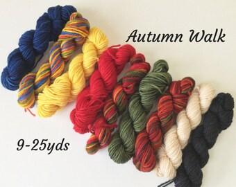 Autumn Walk - 9 Sock yarn mini Skeins, 25 yds each, 225 yds total