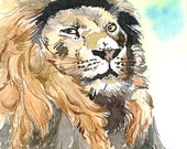ACEO Limited Edition 2/25- Stare, Lion, Animal painting, Art print of an original watercolor painting, Cute painting for animal lovers