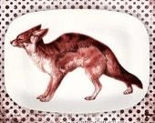 Fox, red fox engraving melamine plattter