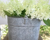 RESERVED FOR BECCA Galvanized Bucket - Oval Shape