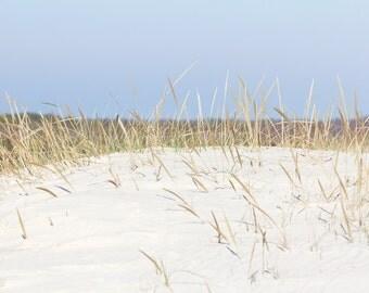 Beach Photography, Coastal Wall Art, Sand Dune Photo with Beach Grass, Blue and Beige Beach Art, Seashore Decor, Beachy Dune Grass Picture