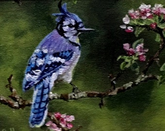 "Fine Art, Original Oil Painting,  5 1/2 X 6 1/2 ""Blue Jay"""