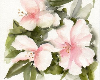 White rhodies, Original watercolor painting, Floral art, spring flowers, white flowers, gardens, nature, botanical, original painting