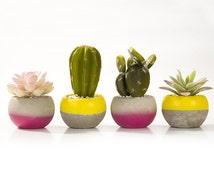 Artificial plant ~ fiesta decoration ~ mantle piece decor ~ fake cactus ~ small unique gifts ~ desert landscape ~ windowsill ideas ~ gift
