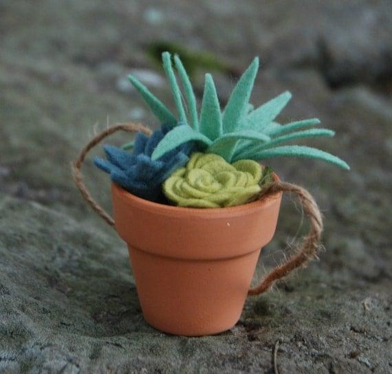tiny felt succulents in a clay pot faux succulents potted. Black Bedroom Furniture Sets. Home Design Ideas
