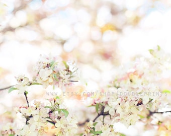 Fine Art Photograph, Spring Blossoms, Nature Photography, Peach Floral Art