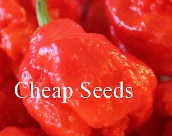 Carolina Reaper Pepper Seeds, Hottest Pepper in the World, Very HOT, 5 Seeds