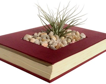Eco Book-Planters - books repurposed and saved from the dump
