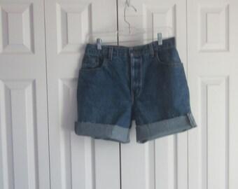 High Waist 32 Shorts, High Waisted , Denim Jean Shorts, Cut Off Roll Up Shorts, Womens Size 10, Upcyled Bill Blass Cutoffs, Hipster