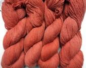 Alpaga - Orange sanguine