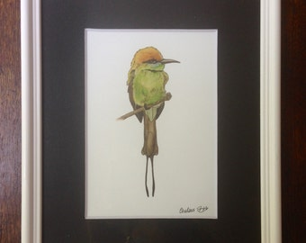 Green Bee-eater Watercolor Print