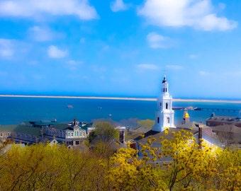 Provincetown Wonder - Yellow Dreams