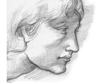 Male Profile Drawing, Print of Pencil Illustration, Renaissance Style of Michelangelo, Drawing of Male Head, 8 x 10