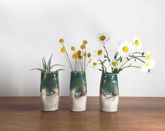 donut vase / air plant holder / bud vase - oribe green