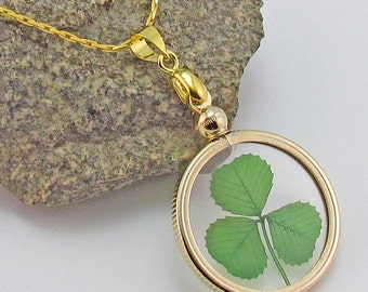 Gold Charm Necklace with a Real Genuine Shamrock - GN-3J