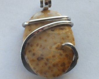 Handmade Petrified Palm Wood pendant wrapped in sterling silver by Isabella Roth