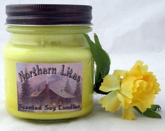 Best Friends candle, Mason Jar candle, 8 oz candle, jar candle, jar candle, soy candle, scented soy candle, scented candle, gift for friend