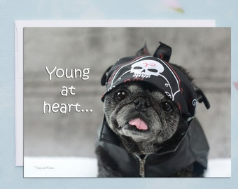 Funny Birthday Card - Happy Birthday Card - Young at Heart, Pug Getting Older Card by Pugs and Kisses