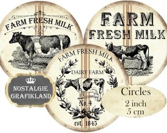 Farm Fresh Milk Cow Vache Circles 2 inch digital collage sheet download C132