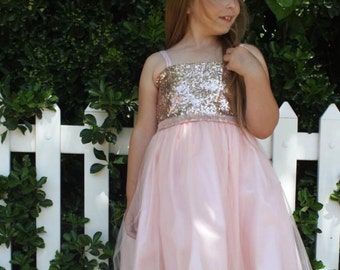 Stunning Blush Sequin Dress with Tulle Skirt