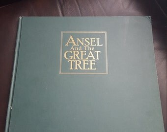 Vintage Child's Storybook, Ansel and the Great Tree, Rose Switzer author, Quang Ho artist, Matthew Switzer composer,DVD included