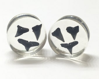 """22mm (7/8"""") Shark Tooth Collection - Shark Tooth Plugs - Double Flared Plugs - Gauges - Resin Jewelry"""
