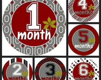 Buckeye Monthly Stickers