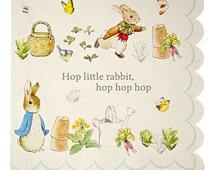 Peter Rabbit Large Napkins, Meri Meri 7 X 7 Inch Napkin Baby Shower Easter Spring Storybook Party Supply