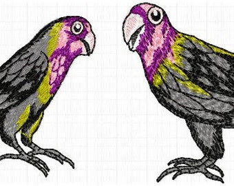 Parrot few bird embroidery files Instantr download