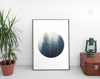 Forest print, forest, forest prints, tree print, tree prints, nature prints, nature photography, nature art, prints, printable artwork,