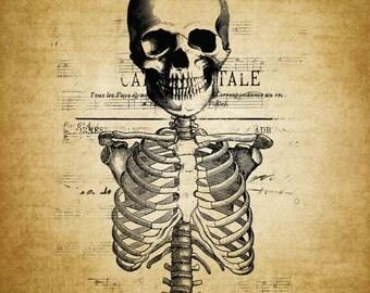 Halloween ClipArt Clip Art, Skull Image, Iron on Fabric Transfer onto Burlap, Halloween Printable Image, Halloween Digital