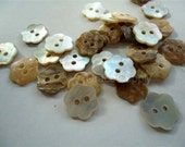 lot of 30 Abalone shell button floral style 30pcs in --12mm