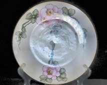 M Z Austria Hand Painted Plate with Pink Wild Roses circa 1900