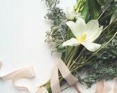6 yards palest peachy blush Hand-dyed silk habotai ribbon