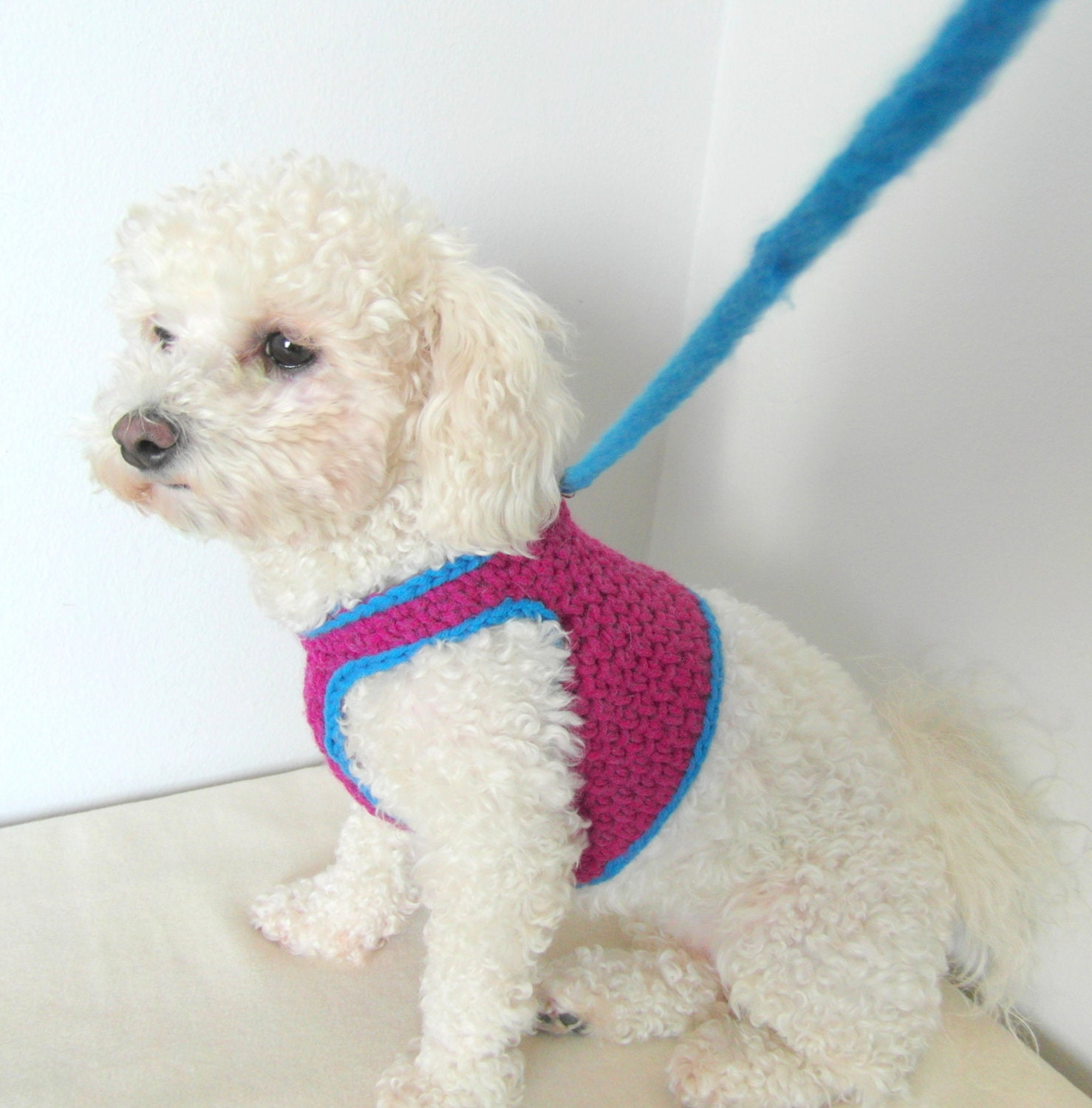 Dog Harness Knitting Patterns - WIRE Center •