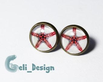 Cabochon earrings Starfish summer maritim