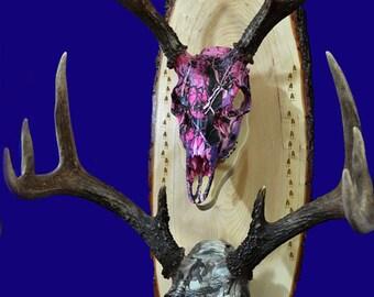 Deer Hunting ~  European Mount Plaque ~ Deer ~ Deer Skull Mount ~ Gift For Hunter ~ Antler Mount ~ Gift For Dad ~ Gift For Husband ~ Hunting