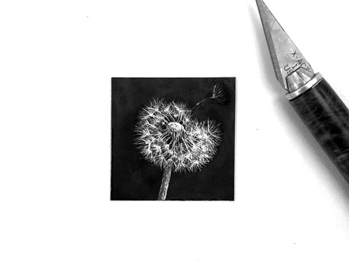 "Print of miniature painting of a Dandelion. 1 1/4"" x 1 1/4"" print of original Dandelion painting on 5"" square german etching paper"