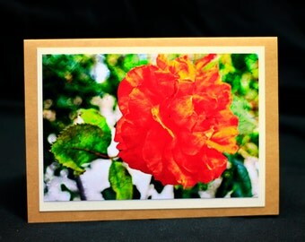 "All occasion photo card ""Orange Rose"""