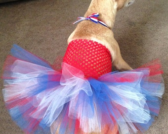 USA dog tutu, patriotic dog outfit, Fourth of July parade dog outfit, USA Olympic dog, American dog outfit, USA tutu, patriotic dog tutu