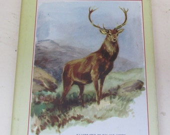 British Animals of the Wild Places by J. Wentworth Day