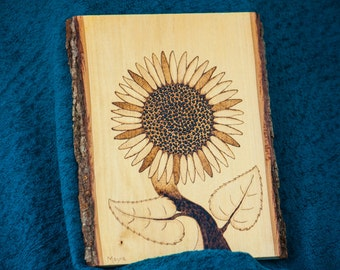 Sunflower pyrography drawing