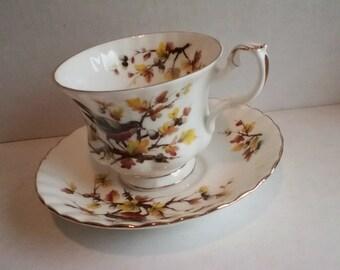 Woodland series- Robin tea cup and saucer England Royal Alpert